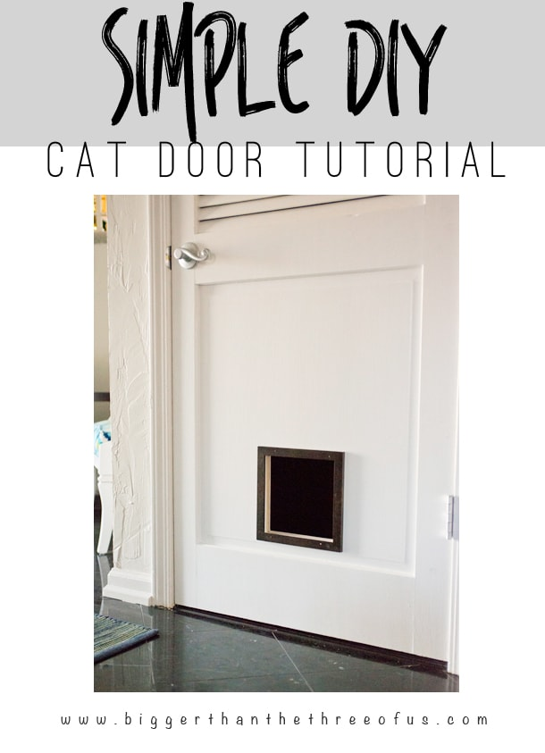 Simple diy cat door tutorialg hop over to learn how to make this simple diy cat door get the tutorial planetlyrics Images