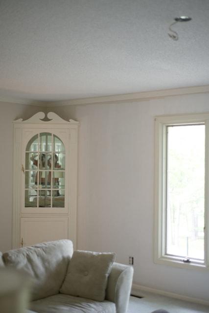 Living Room Wall Primed
