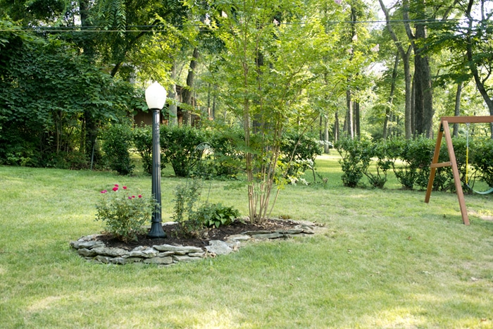 mulch and tree trimmed after