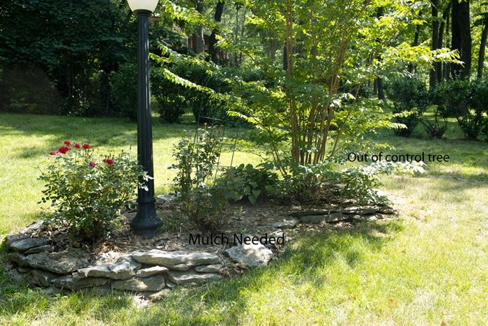 patio progress landscaping