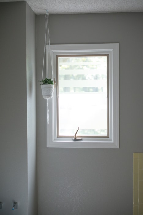 Hanging planter in bathroom