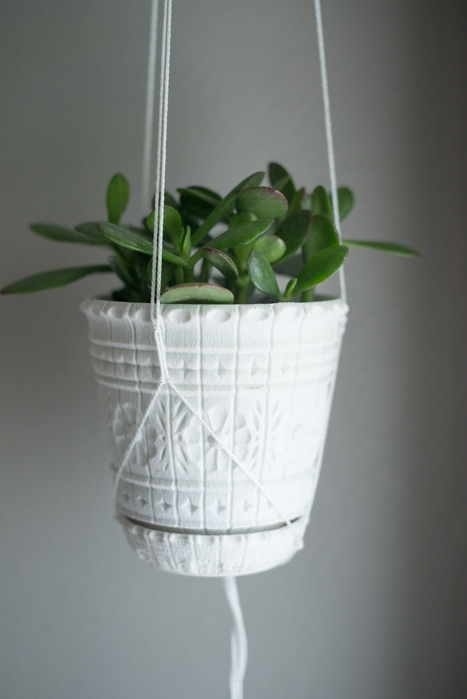 closeup of string plant hanger