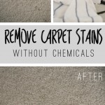 Remove Carpet Stains Without Chemicals!