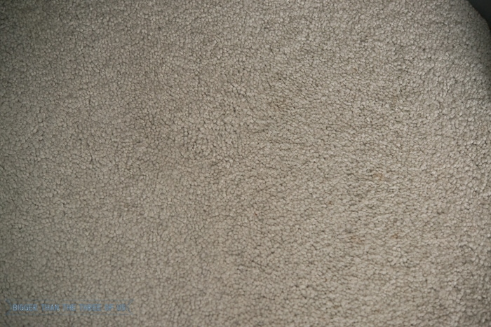 Remove Carpet Stains Without Chemicals - Use this tutorial to find out how!