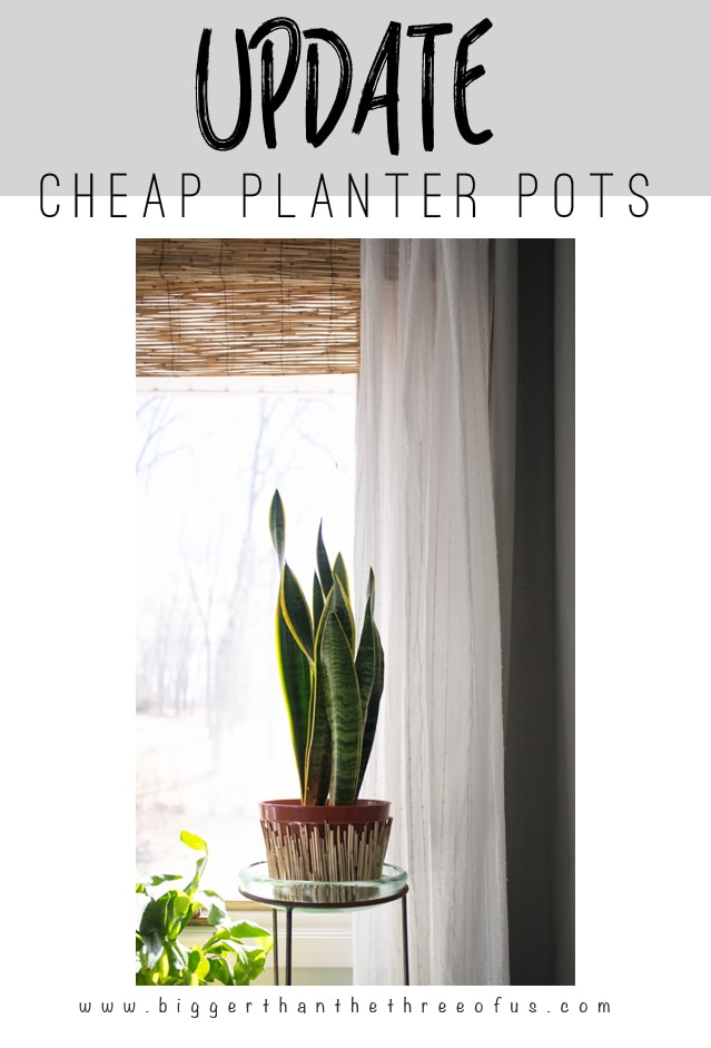 This How-To will show you how to update cheap planter pots