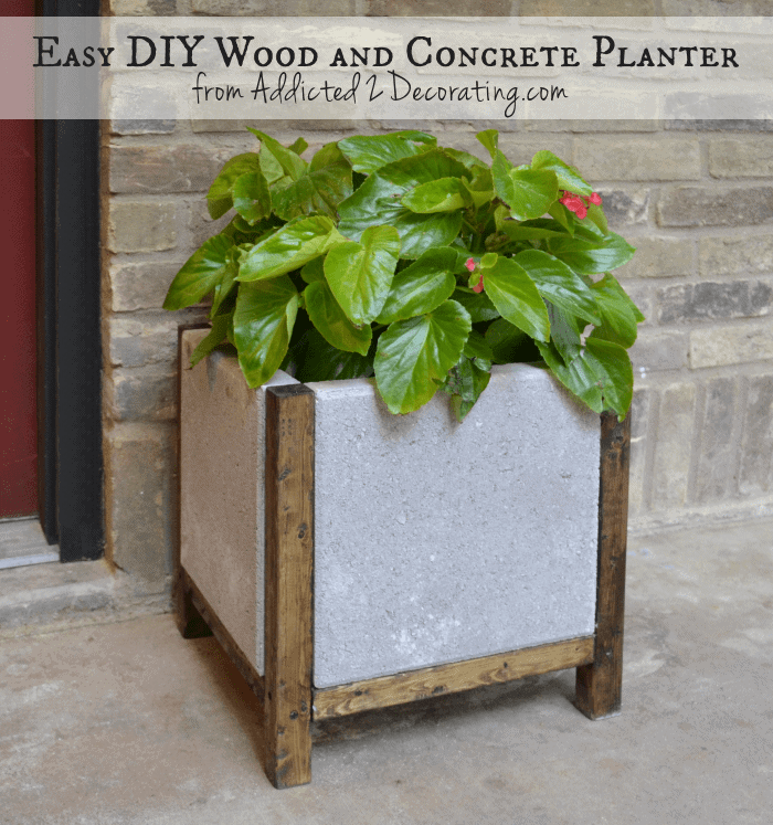 wood-and-concrete-planter-