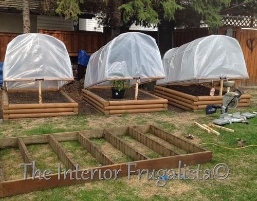 Mini Greenhouses   (5)