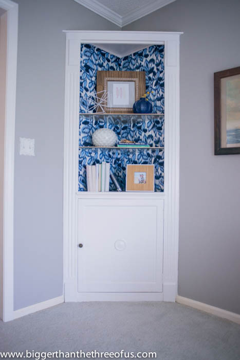 Cabinet Makeover for Built-in