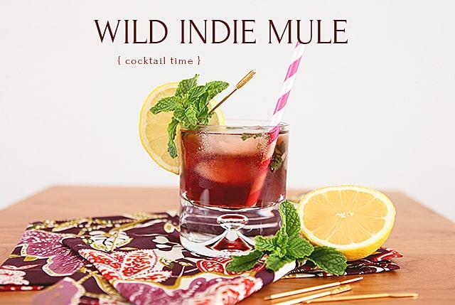 wild-indie-mule-2
