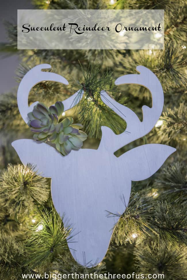 DIY Succulent Reindeer Ornament