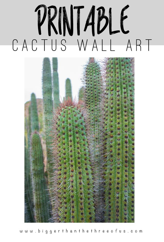 Free Printable Cactus Art for your Gallery Wall