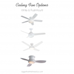 Ceiling Fan options that are modern and white