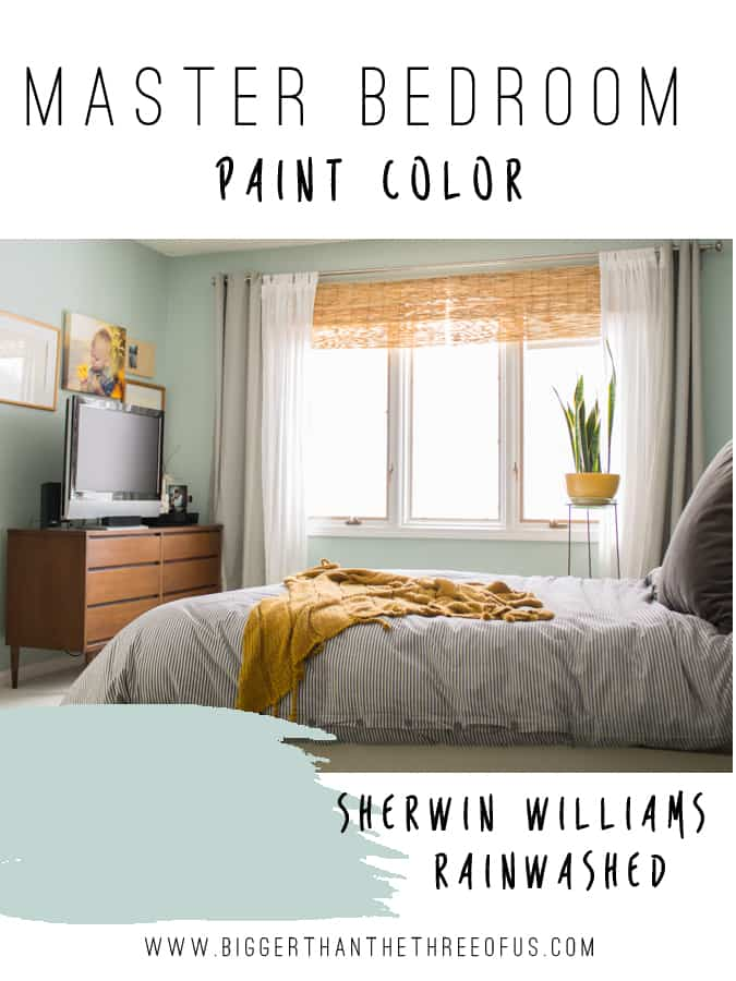 Master bedroom paint color right one