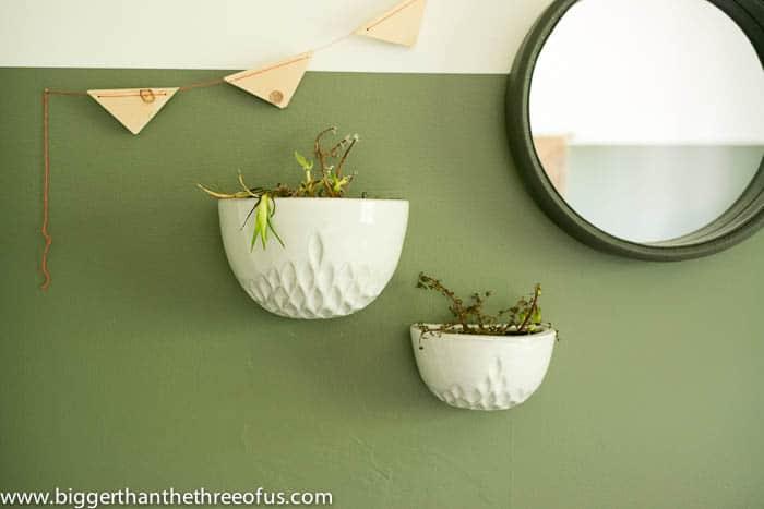 The Ugly Truths l Plants l www.biggerthanthethreeofus.com