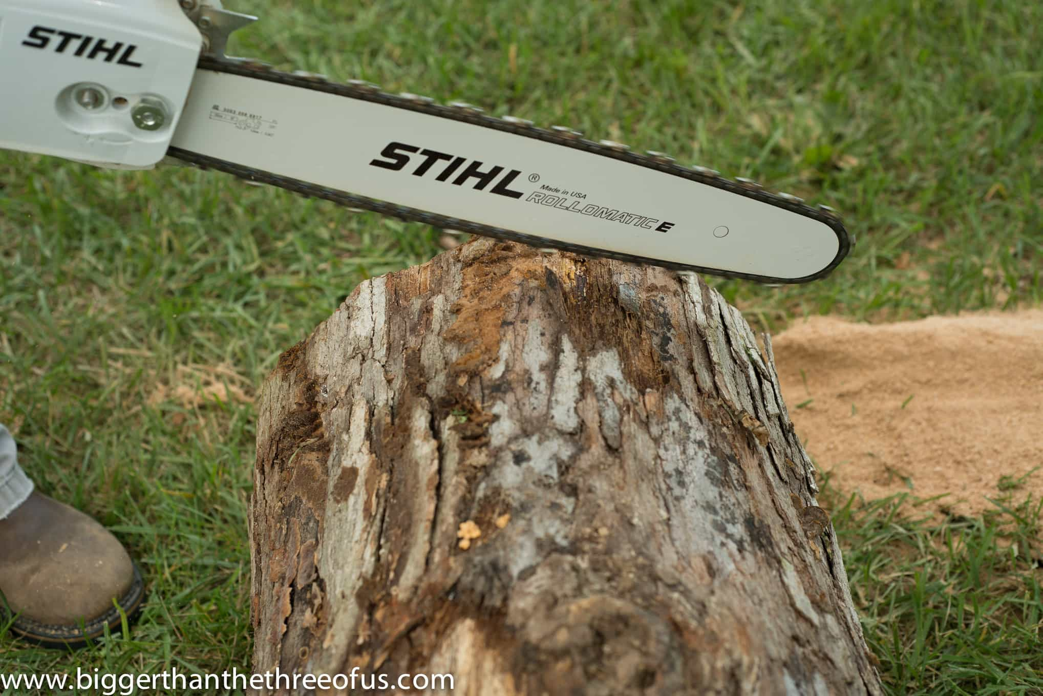 chainsaw cutting wood stump