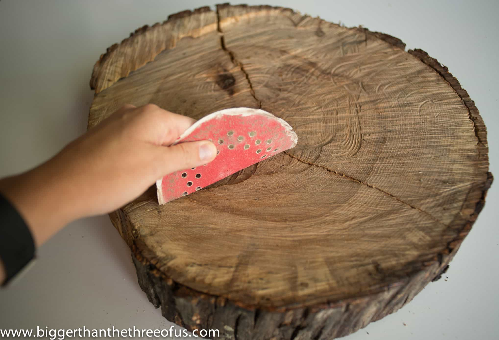 sanding pad on wood slice
