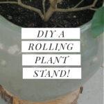 DIY plant roller