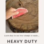 making a tree stump plant caddy