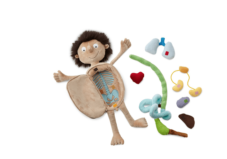 This guy is a perfect gift for a child who wants to play doctor!