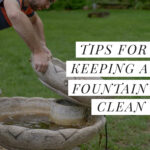 cleaning a water fountain
