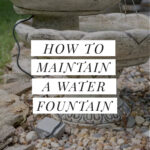 maintaining a water fountain