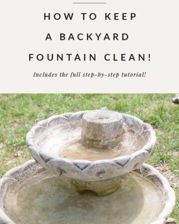 backyard fountain closeup