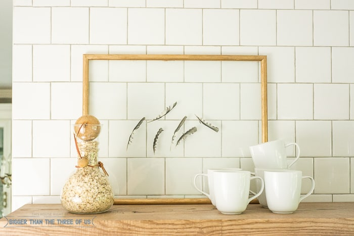 5 minute feather art - perfect for a gallery wall or shelf!