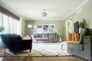 Eclectic, Mid-Century Inspired Living Room