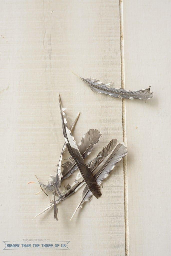 West Elm Inspired DIY Feather Art