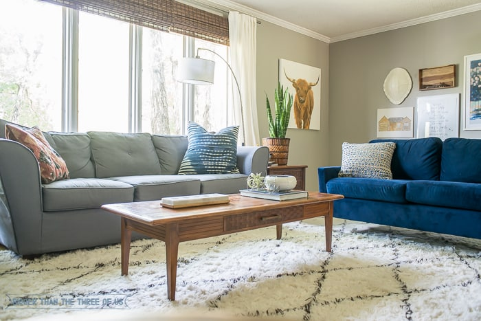 Modern Eclectic Mid-Century Living Room