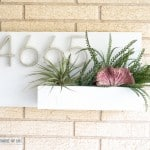 Make this DIY Address Plaque with Succulents