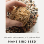 How to make birdseed balls perfect for a kids diy project