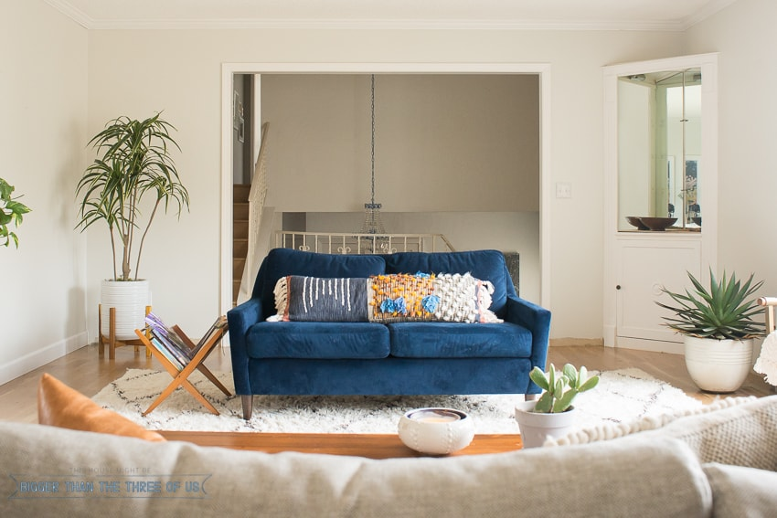 Navy Blue Couch in modern living room