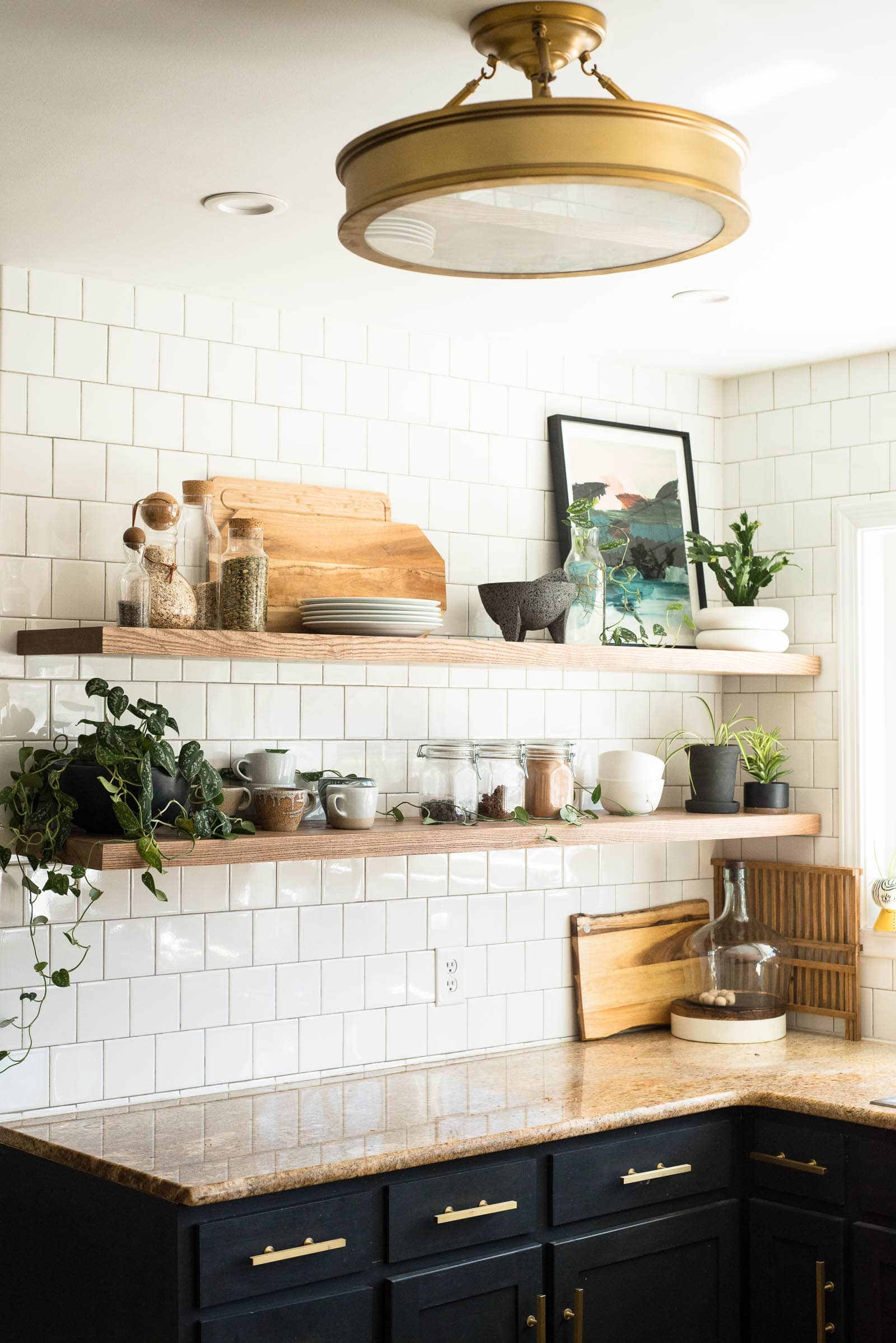 Plants on kitchen shelves