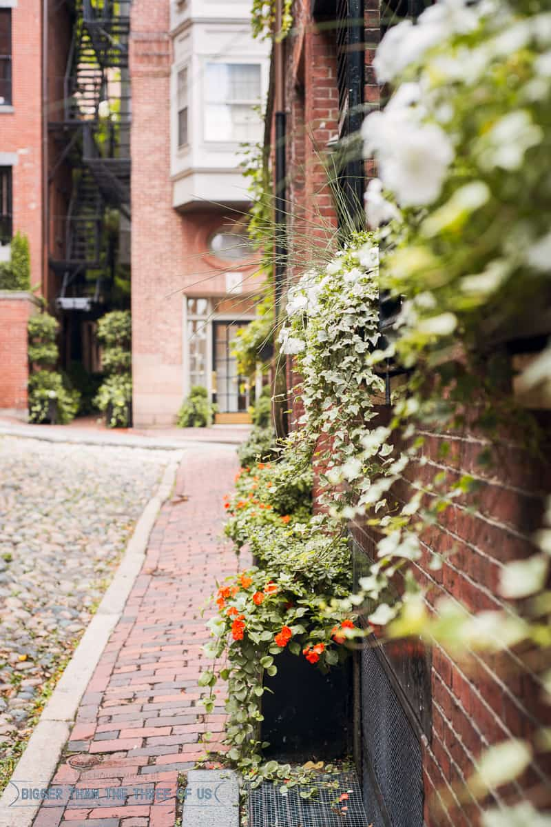 3 Days in Boston -- Where to Eat and What to See - Acorn Street in Beacon Hill