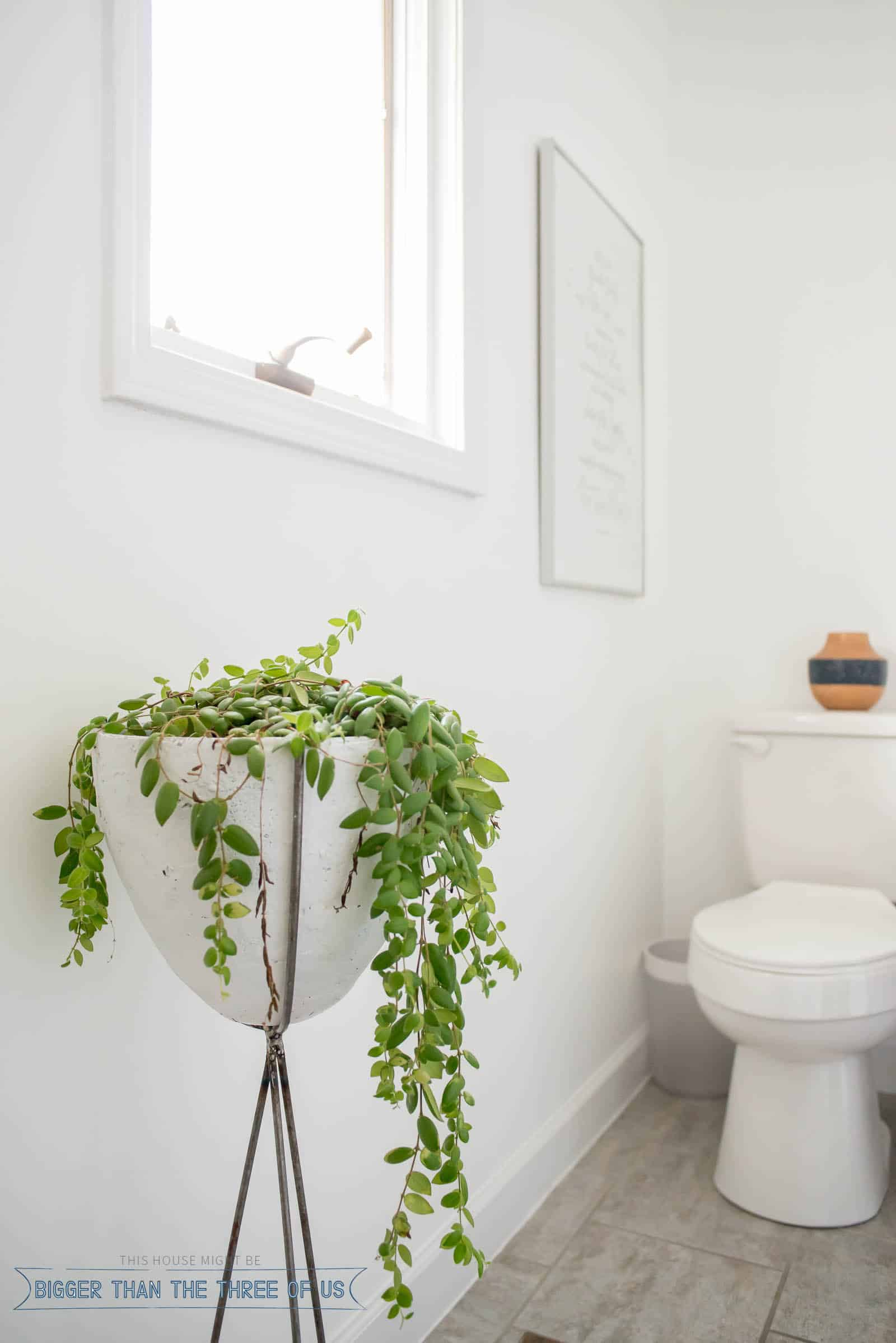 DIY Bullet Planter in bathroom