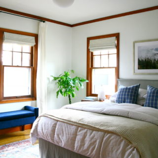 White walls in bedroom with bed to the right and a plant in the corner of the room.