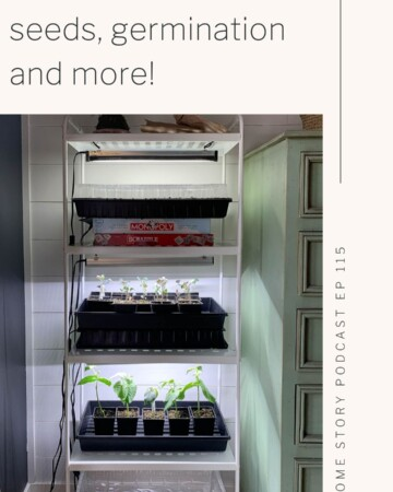 All about indoor gardening