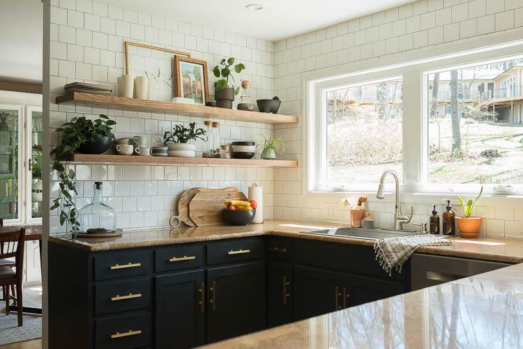 easy house plants on kitchen shelves