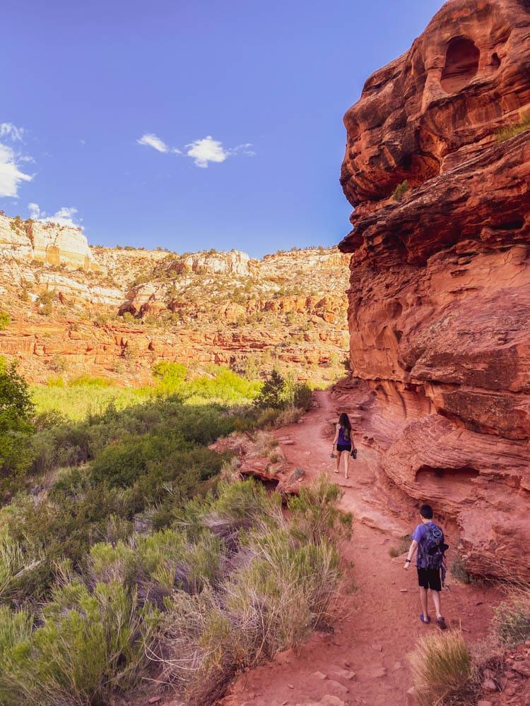 Tips for hiking Lower Calf Creek Falls Utah