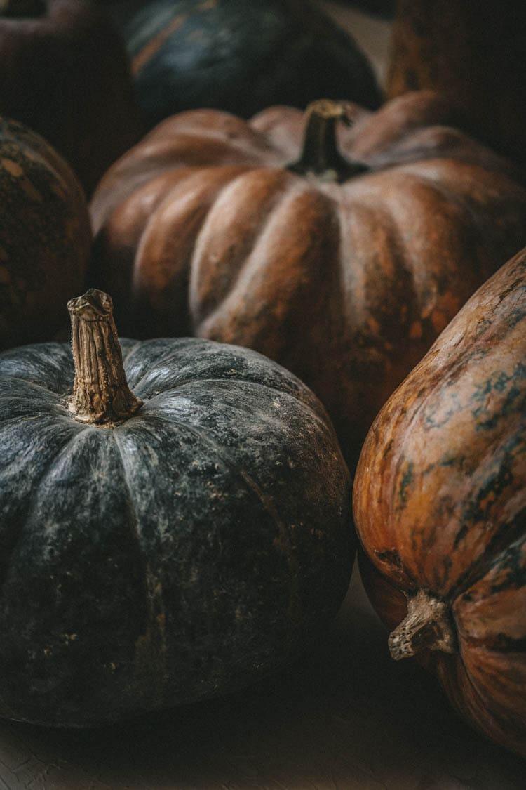 Halloween art prints: moody pumpkin art